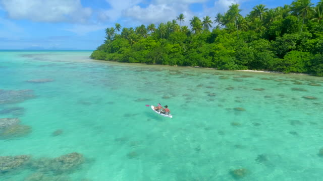 vidéos et rushes de aerial drone view of a man and woman couple kayaking on a tandem kayak in scenic tropical islands. - polynésie française