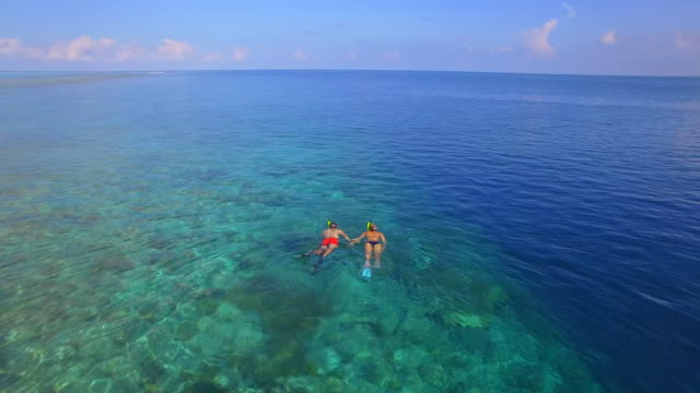 aerial drone view of a man and woman couple snorkeling over the coral reef of a tropical island. - schnorchel stock-videos und b-roll-filmmaterial