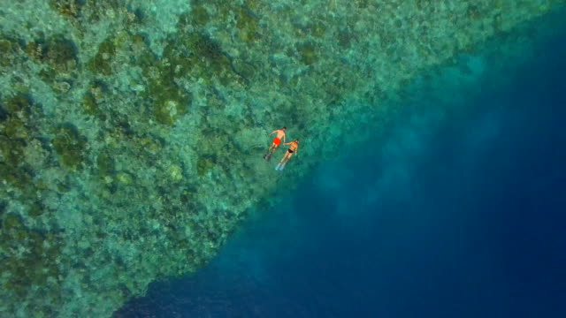 aerial drone view of a man and woman couple snorkeling over the coral reef of a tropical island. - semi dress stock videos and b-roll footage