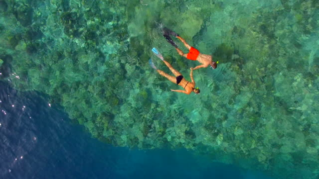 aerial drone view of a man and woman couple snorkeling over the coral reef of a tropical island. - underwater diving stock videos & royalty-free footage