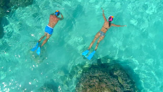 aerial drone view of a man and woman couple snorkeling swimming around scenic tropical islands. - schnorchel stock-videos und b-roll-filmmaterial