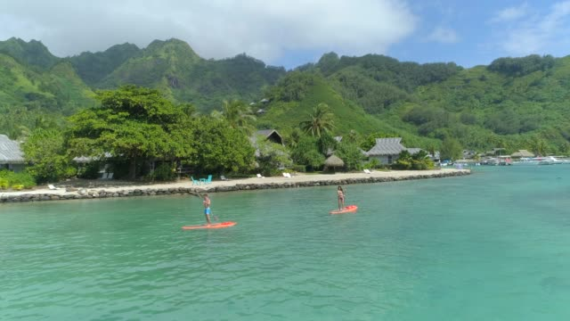 aerial drone view of a man and woman couple sup stand up paddle boarding at a resort on a tropical island. - french polynesia stock videos & royalty-free footage