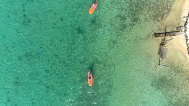 aerial drone view of a man and woman couple sup stand up paddle boarding at a resort on a tropical island. - pagaiare video stock e b–roll