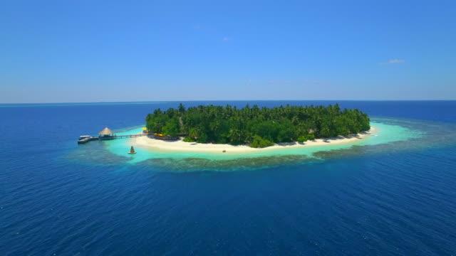 vídeos y material grabado en eventos de stock de aerial drone view of a man and woman eating breakfast on a tropical island beach. - techo de paja