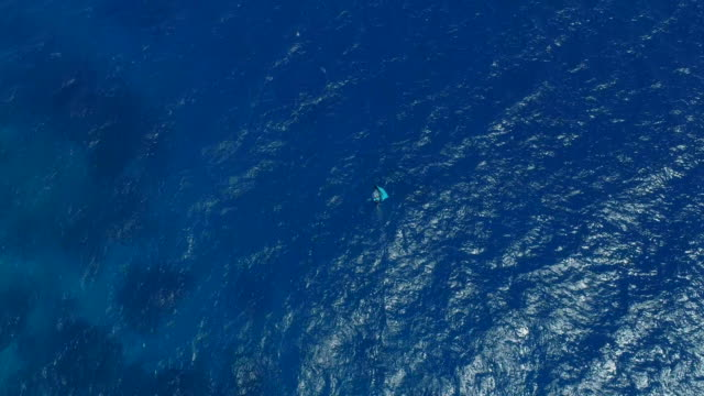 aerial drone view of a man kite board wing surfing hydrofoiling in the blue pacific ocean. - south pacific ocean stock videos & royalty-free footage