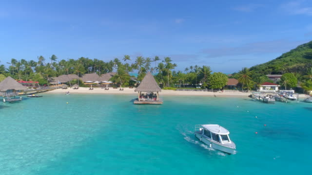 aerial drone view of a pier dock and boat in bora bora tropical island. - モーターボート点の映像素材/bロール