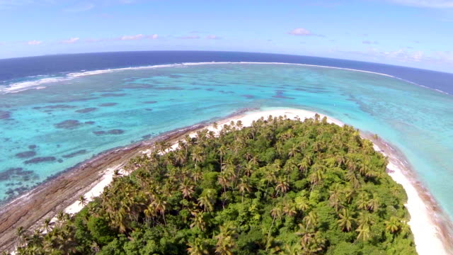 aerial drone view of a scenic tropical island in fiji. - fiji stock videos & royalty-free footage