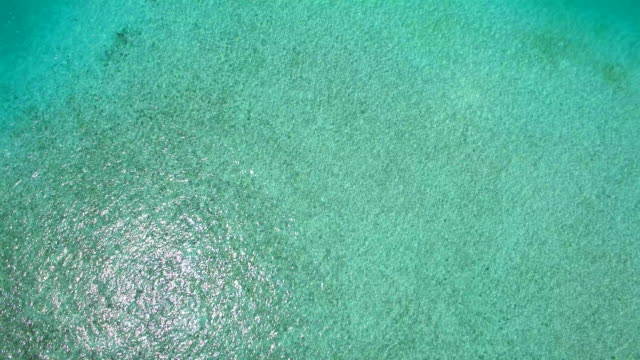 vídeos de stock, filmes e b-roll de aerial drone view of a scenic tropical island in the maldives. - oceano índico