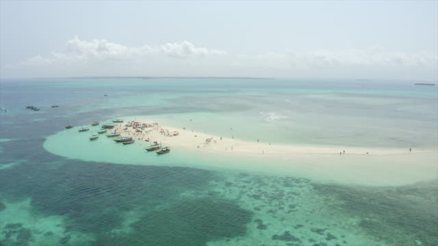 aerial drone view of a tropical beach sandbar in zanzibar, tanzania. - tropical climate stock videos & royalty-free footage