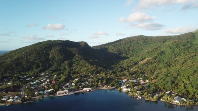 stockvideo's en b-roll-footage met aerial drone view of a tropical forest on a mountain and the sea - tahiti