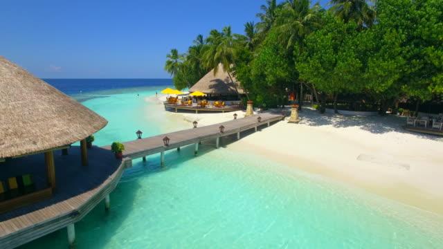 vídeos de stock e filmes b-roll de aerial drone view of a tropical island dock pier over a beach. - árvore tropical