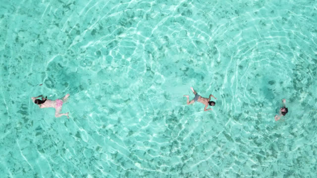 aerial drone view of a woman  and children floating and swimming on a tropical island. - huahine island stock videos and b-roll footage