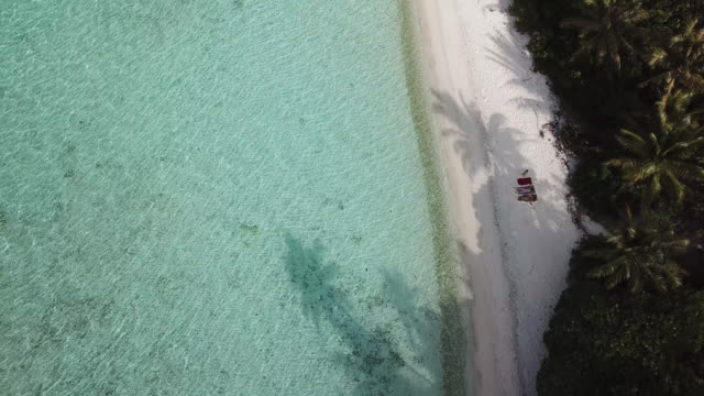 aerial drone view of  a woman  and children on a white sand beach on a tropical island. - huahine island stock videos and b-roll footage