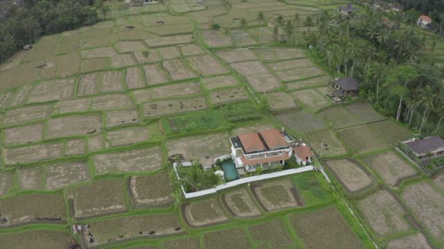 vidéos et rushes de aerial drone view of a woman at a villa resort hotel traveling in exotic tropical bali, indonesia. - time-lapse - seulement des jeunes femmes