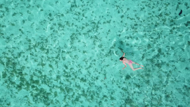 aerial drone view of a woman  floating and swimming on a tropical island. - huahine island stock videos and b-roll footage
