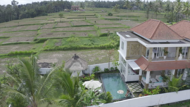 aerial drone view of a woman swimming in a pool at a villa resort hotel traveling in exotic tropical bali, indonesia. - ubud district stock videos & royalty-free footage