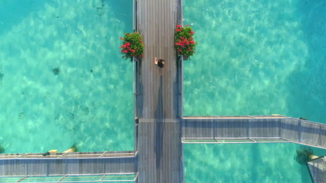vídeos de stock, filmes e b-roll de aerial drone view of a woman walking between the overwater bungalows in bora bora tropical island. - polinésia francesa