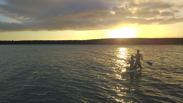 vídeos y material grabado en eventos de stock de aerial drone view of a young man and woman couple tandem sup stand-up paddleboarding at sunset in a bay. - espiritualidad