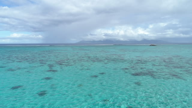 aerial drone view of blue green water in tahiti. - reef stock videos & royalty-free footage