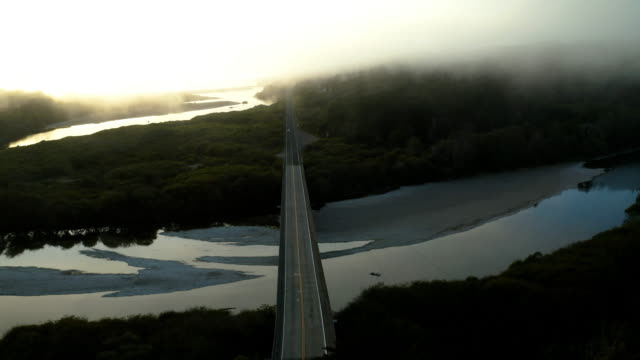 aerial drone view of bridge in northern california - northern california stock videos & royalty-free footage