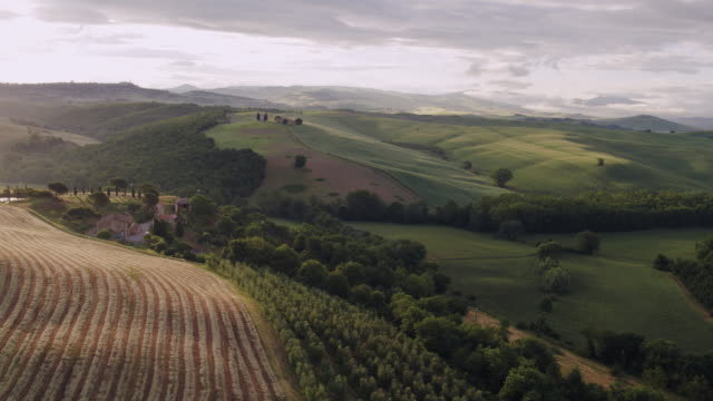 Aerial drone view of countryside at sunrise, Tuscany, Italy