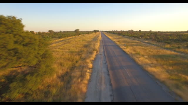 aerial drone view of driving a pickup truck paved highway road in africa during a safari. - tarmac stock videos & royalty-free footage