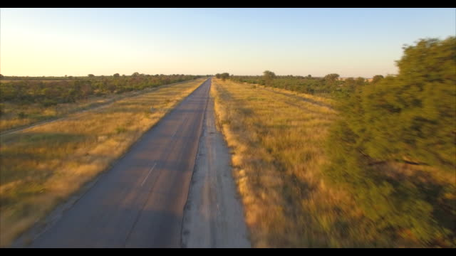 aerial drone view of driving a pickup truck paved highway road in africa during a safari. - ボツワナ点の映像素材/bロール