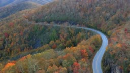 Aerial Drone view of Fall / Autumn leaf foliage on Highway 215 from above. Vibrant yellow, orange, and red colors in Asheville, NC in the Blue ridge Mountains.