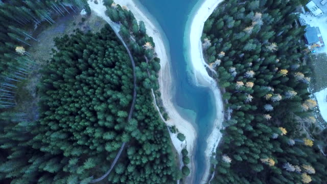 aerial drone view of forest and alpine lake - trentino alto adige südtirol video stock e b–roll