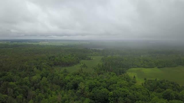 vídeos de stock, filmes e b-roll de vista aérea de drone do cinturão verde em um dia de verão em ottawa, ontário - ottawa