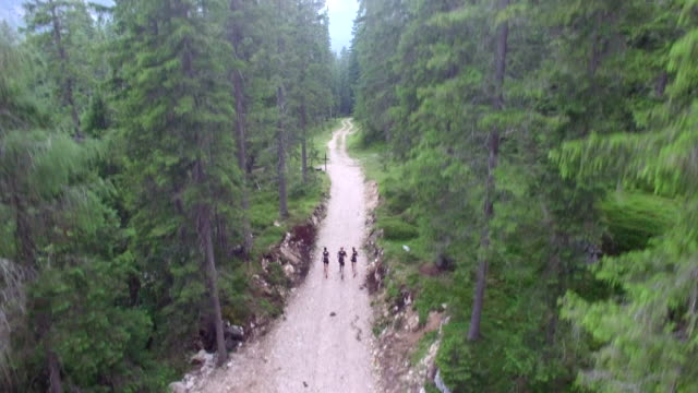 Aerial drone view of hikers ascending mountain road