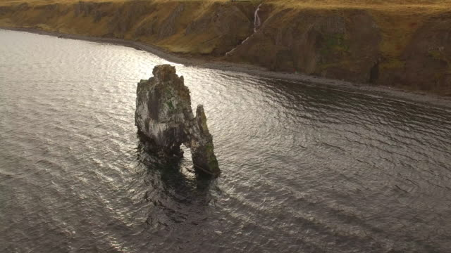 aerial drone view of hvitserkur sea stack arch and basalt stack rock formation in iceland, europe. - goodsportvideo stock videos and b-roll footage