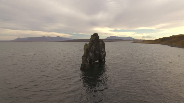aerial drone view of hvitserkur sea stack arch and basalt stack rock formation in iceland, europe. - basalt stock videos & royalty-free footage
