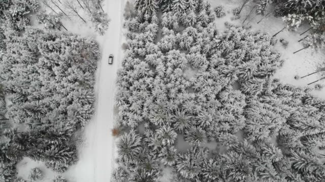 vidéos et rushes de aerial drone view of minivan suv car driving on a snow covered forest and winter road trail. - solitude