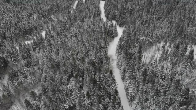 aerial drone view of minivan suv car driving on a snow covered forest and winter road trail. - deep snow stock videos & royalty-free footage