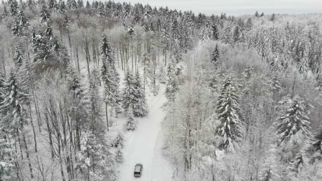 vídeos de stock, filmes e b-roll de aerial drone view of minivan suv car driving on a snow covered forest and winter road trail. - reclusão