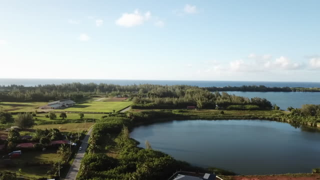 aerial drone view of on houses with a forest and the sea - huahine island stock videos and b-roll footage