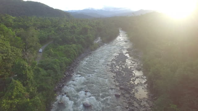 aerial drone view of river in rainforest at sunset - river stock videos & royalty-free footage