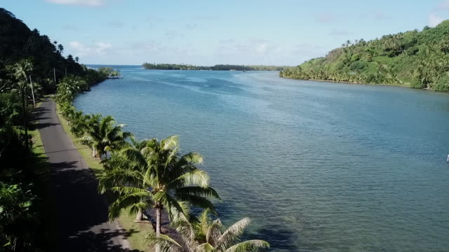 aerial drone view of road by the sea with palm trees with a car - huahine island stock videos and b-roll footage