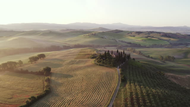 aerial drone view of rolling hills and farmhouse, tuscany, italy - toskana stock-videos und b-roll-filmmaterial