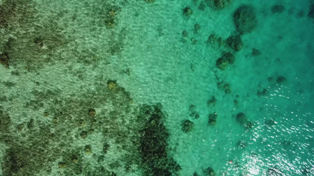 aerial drone view of scenic sea and barrier reef in french polynesia. - südpazifik stock-videos und b-roll-filmmaterial
