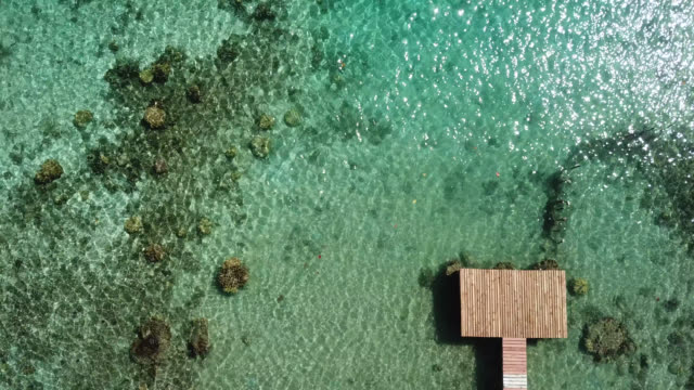 aerial drone view of scenic sea and barrier reef in french polynesia with a pontoon - französisch polynesien stock-videos und b-roll-filmmaterial