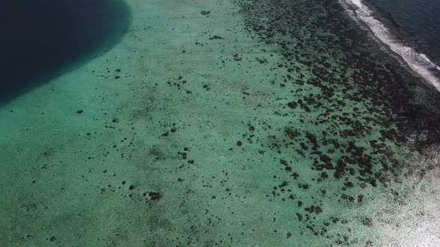 aerial drone view of scenic  sea in french polynesia - shallow stock videos and b-roll footage