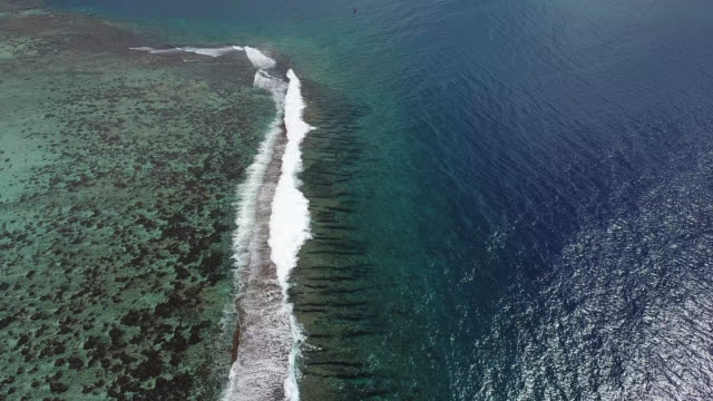 vidéos et rushes de aerial drone view of scenic tropical islands and barrier reef in french polynesia. - récif corallien