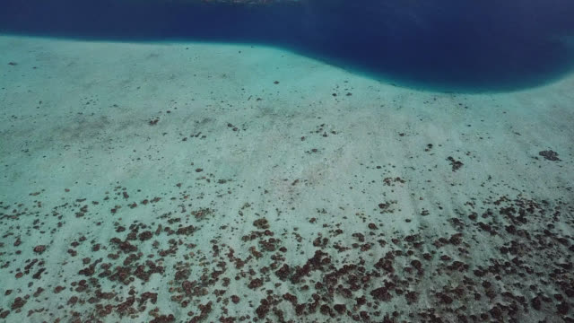 vídeos de stock, filmes e b-roll de aerial drone view of scenic tropical islands and barrier reef in french polynesia. - polinésia francesa