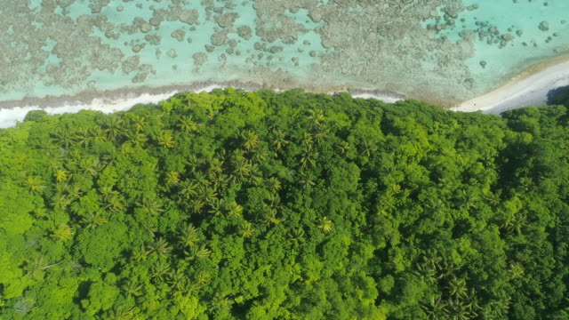 Aerial drone view of scenic tropical islands and reef in French Polynesia.