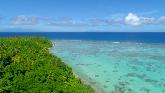 aerial drone view of scenic tropical islands in french polynesia. - south pacific ocean stock videos & royalty-free footage