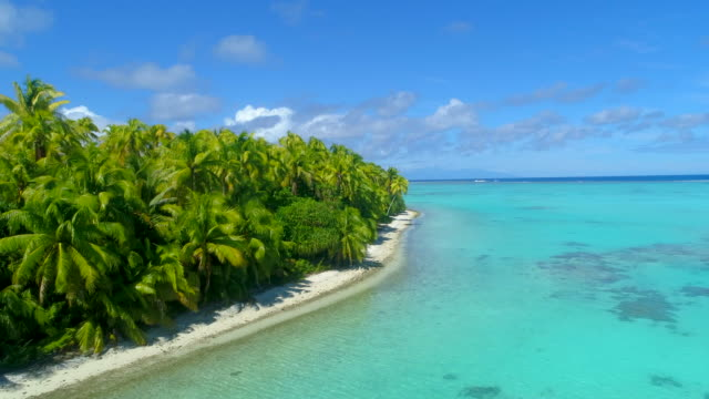 vídeos de stock, filmes e b-roll de aerial drone view of scenic tropical islands in french polynesia. - oceano pacífico do sul