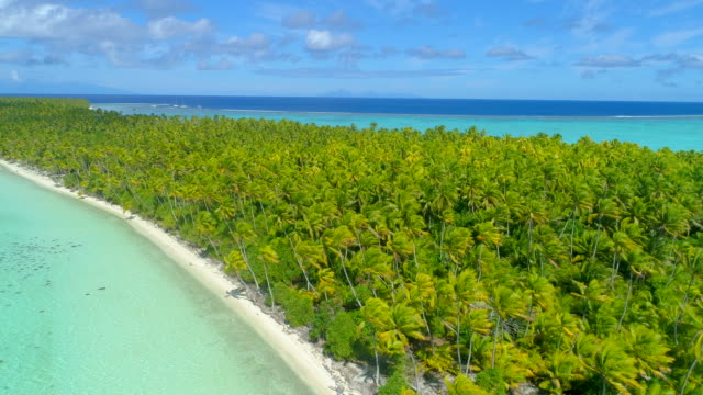 aerial drone view of scenic tropical islands in french polynesia. - idyllic video stock e b–roll