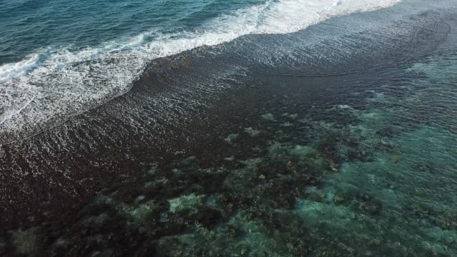 aerial drone view of sea with waves and barrier reef in french polynesia - tahitian culture stock videos & royalty-free footage